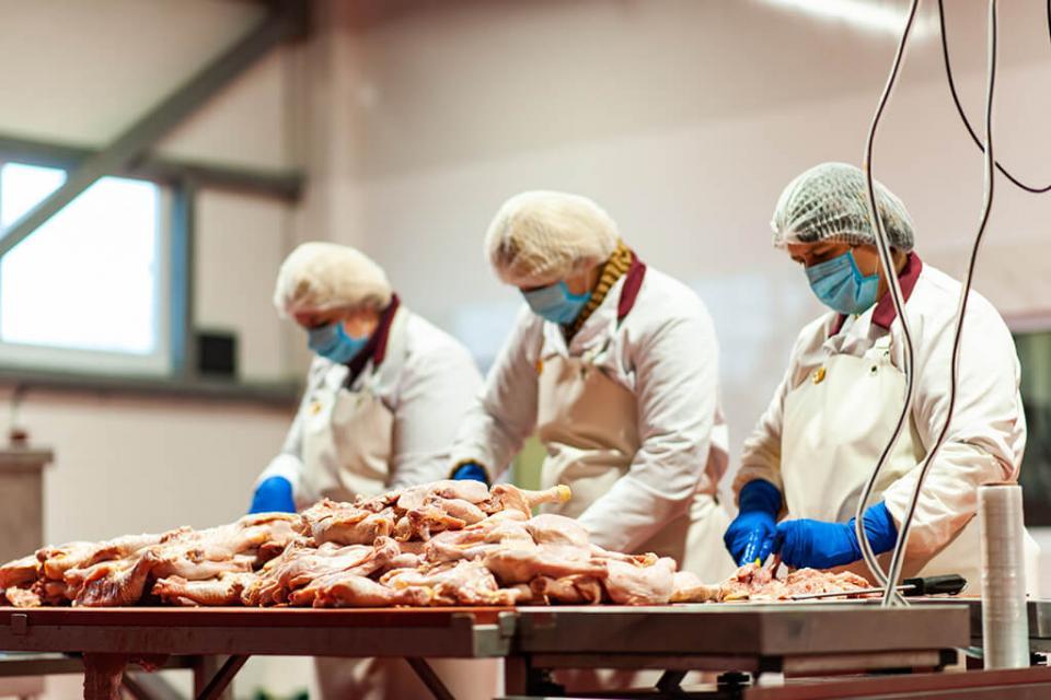 Высокое качество и стандарты чистоты в производстве мяса для шаурмы