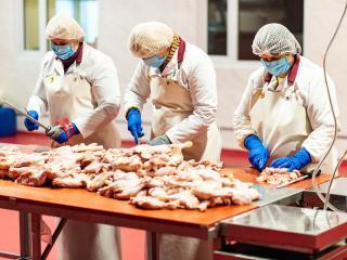 Куриное мясо для шаурмы Happy Doner